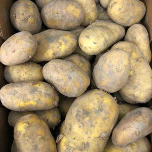 patata - producto