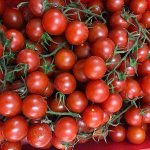 tomate cherry online