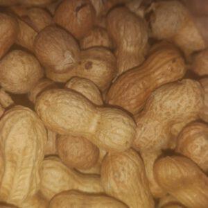 Cacao valenciano - verduleria online