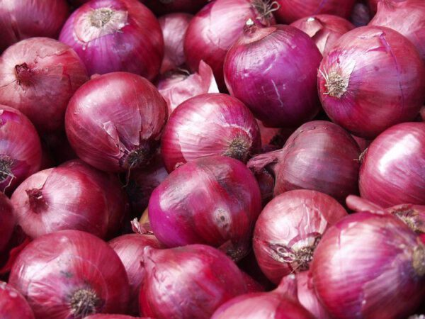 cebolla morada - producto - verduleria