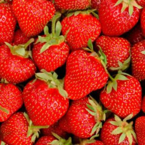 fresas - producto - verduleria
